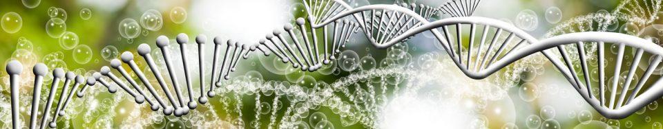 Coaching DNA